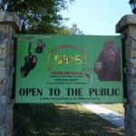 Palm Harbor FL Primate Sanctuary