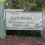Jay Starkley Park in Trinity FL for Nannies
